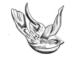 vogel_tattoo_buik2